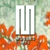 Journée des musées montréalais 2015