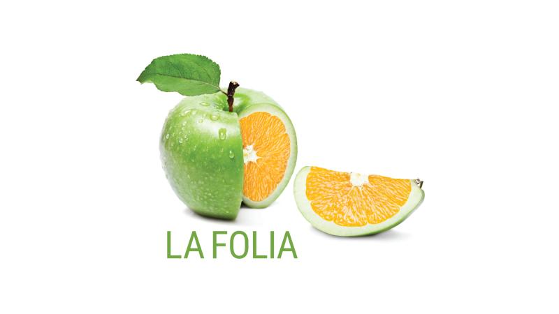 La Folia – Jean-Luc Thellin (France), organiste et Geoffroy Salvas, baryton